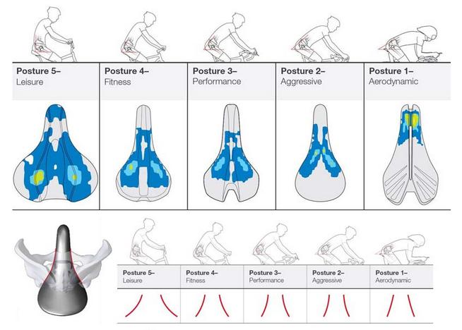 Pengaruh bentuk sadel dan posisi badan
