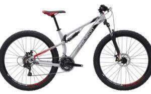Sepeda Gunung Polygon RAYZ ONE 2019