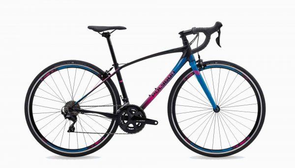 Sepeda Balap Polygon Divine R5