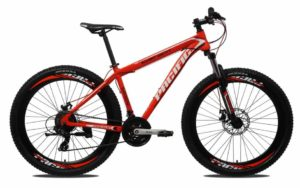 Sepeda Gunung Pacific INVERT 100 VT 27