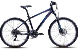Sepeda Gunung Polygon Cleo 5 2013