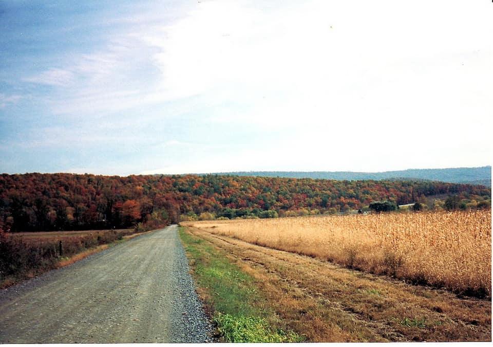 Contoh gambar jalan makadam
