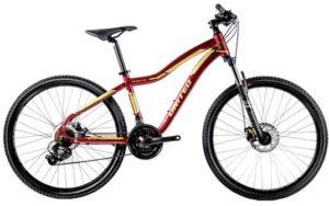 Sepeda Gunung United VENUS 1.00 (2020)