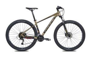"Sepeda Gunung Pacific CAMERON 6.0 29"""