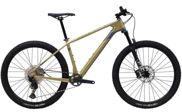 Sepeda Gunung Polygon Syncline C5 Carbon - 2021