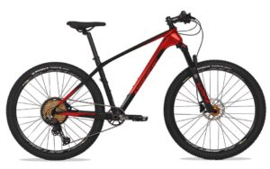 Sepeda Gunung (MTB) Pacific Armour DX