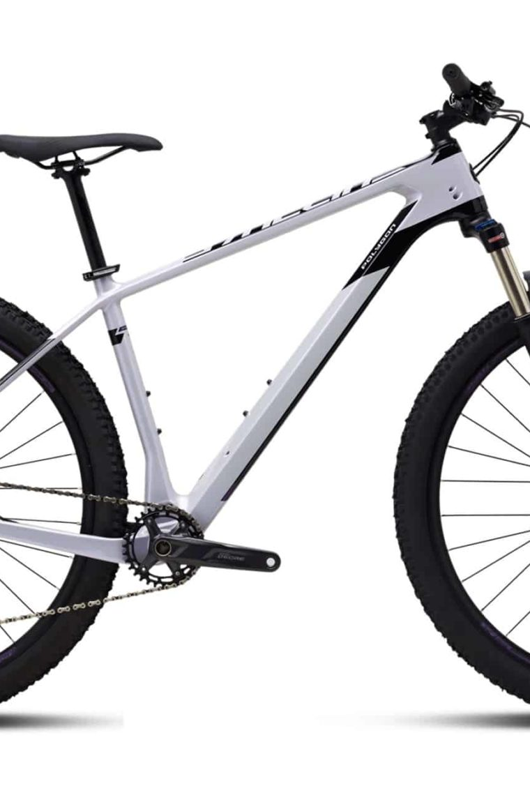 Sepeda Gunung (MTB) Polygon Syncline C2 Carbon - 2021